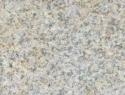 dune-yellow-300x302