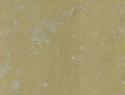 amarelo-negrais-300x302