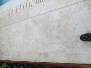 Desert Cream Limestone